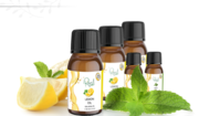 Essential Oils in UK | Essential Oil | Herbal Oil in UK | Aromatherapy
